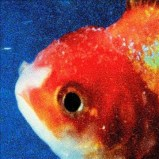 Big Fish Theory, Vince Staples cd
